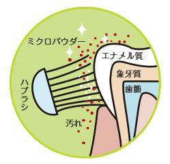 画像:http://www.chuyaku.co.jp/
