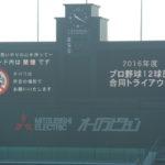 2016年合同トライアウトに行ってみた。阪神からは柴田・坂・鶴・岩本・トラヴィス