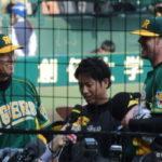 2014/5/11巨人戦:メッセンジャーと鶴岡のバッテリーがG打線を完封、連敗を4で止める